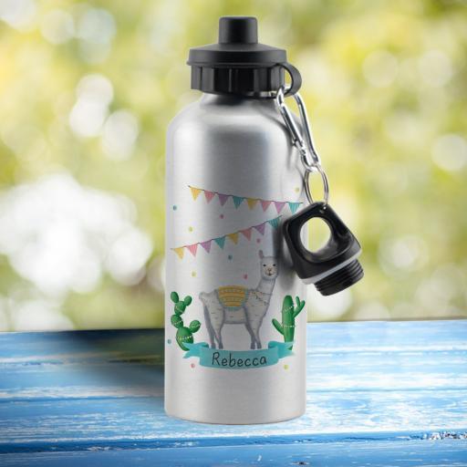 Llama Fiesta Silver Water Bottle