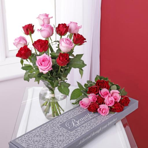 Letterbox Pink & Red Roses